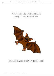 Chauve Souris Coloriage Chauve Souris A Imprimer Touptycom