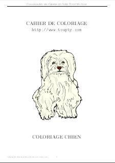 Coloriage Chien De Garde.Coloriage Chien Coloriages Gratuits A Imprimer Toupty Com