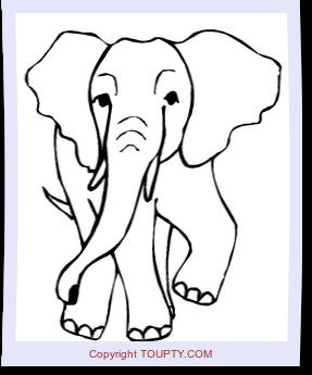 Coloriage Poisson Elephant.Rhinoceros Coloriages A Imprimer De Rhinoceros Toupty Com