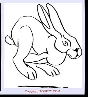 Animaux De Ferme Coloriage A Imprimer Animaux De Ferme