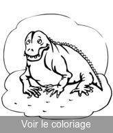 coloriage animal prehistorique mignon