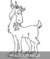 Coloriage Simple Animaux De La Ferme.Animaux Ferme Coloriage Animaux De La Ferme Toupty Com