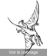 Coloriage Animaux Volants.Animaux Prehistoriques Coloriage Animal Prehistorique Toupty