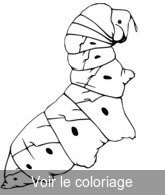 Insecte Coloriage Insectes Toupty Com