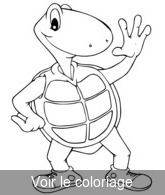 Coloriage A Imprimer Tortue.Tortue Coloriage Tortues Rigolotes Toupty Com