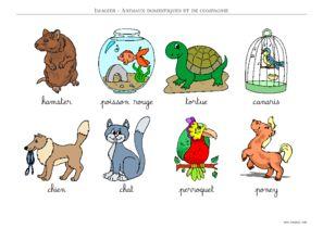 Imagier animaux domestiques a imprimer - Animaux a imprimer en couleur ...
