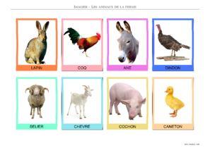 Animaux de la ferme imagier imprimer - Imagier animaux de la ferme ...