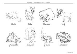 Imagier Animaux De La Foret A Imprimer Toupty Com