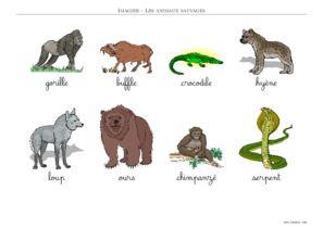 Imagier animaux sauvages a imprimer - Imagier animaux de la ferme ...